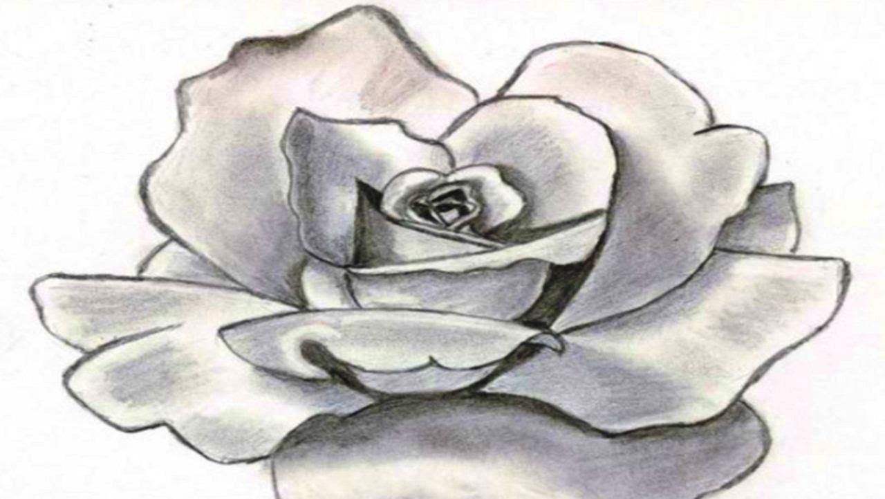 Картинки с цветами узоры