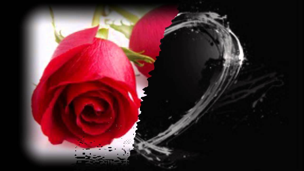 Нежность влюбленных картинки