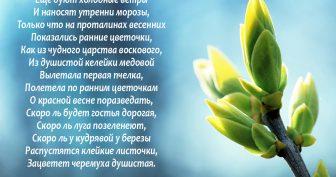 Красивые картинки со стихами (36 фото)