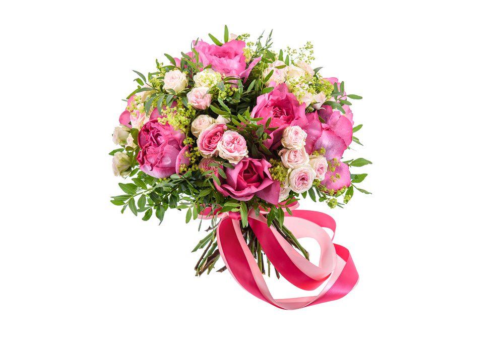 Лилия фото цветок