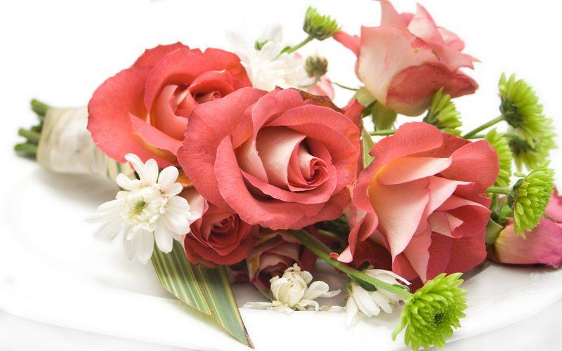 Картинки цветы красивые букеты на белом фоне рисунок