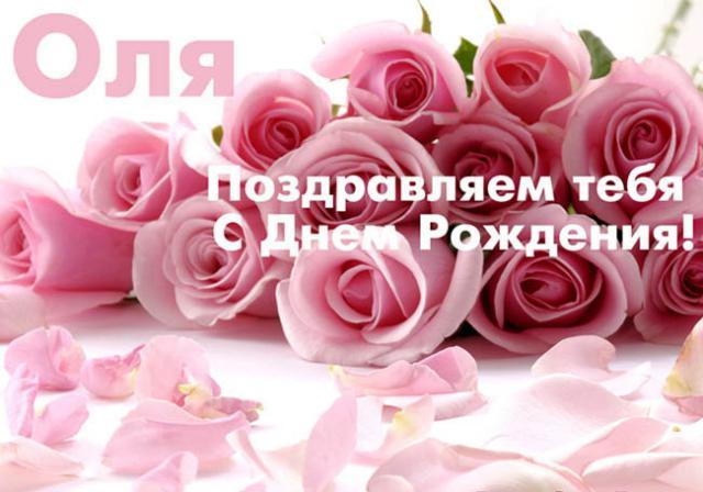 Комнатные цветы и название гербера 69