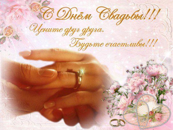 Поздравление на свадьбу в прозе короткие прикольные