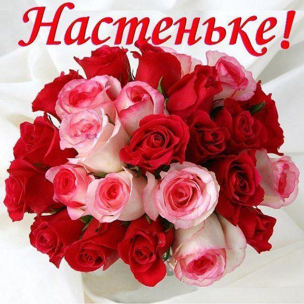 Фото красивые цветы нежные