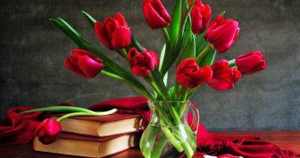 Красивые картинки на рабочий стол цветы (35 фото)