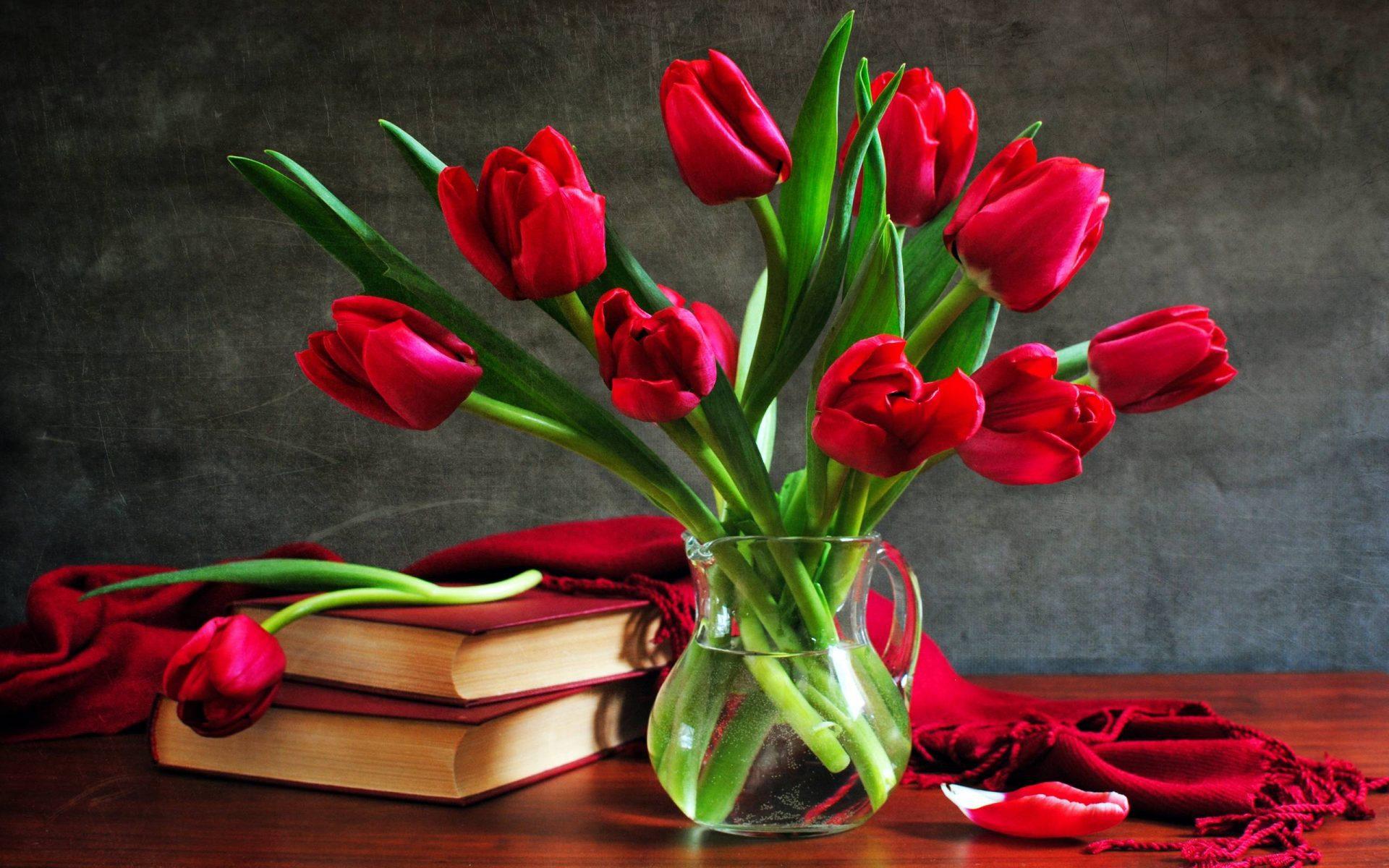 Фото цветы красные розы