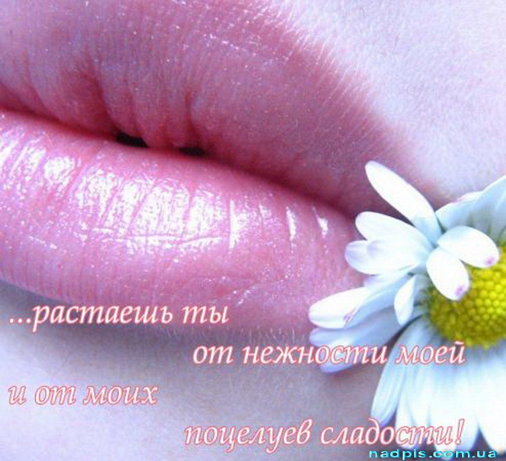 Открытки Привет с поцелуями Привет - Музыкальные открытки