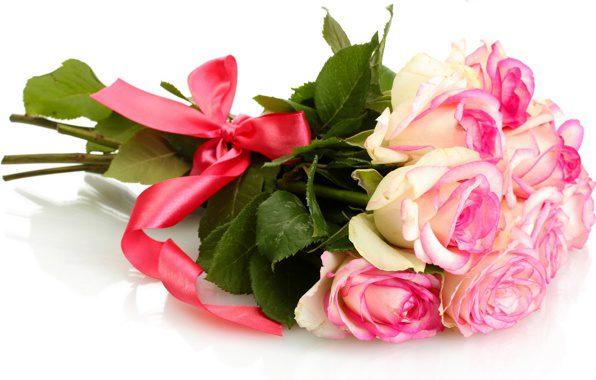 Великолепная роза с красивой попкой скачать