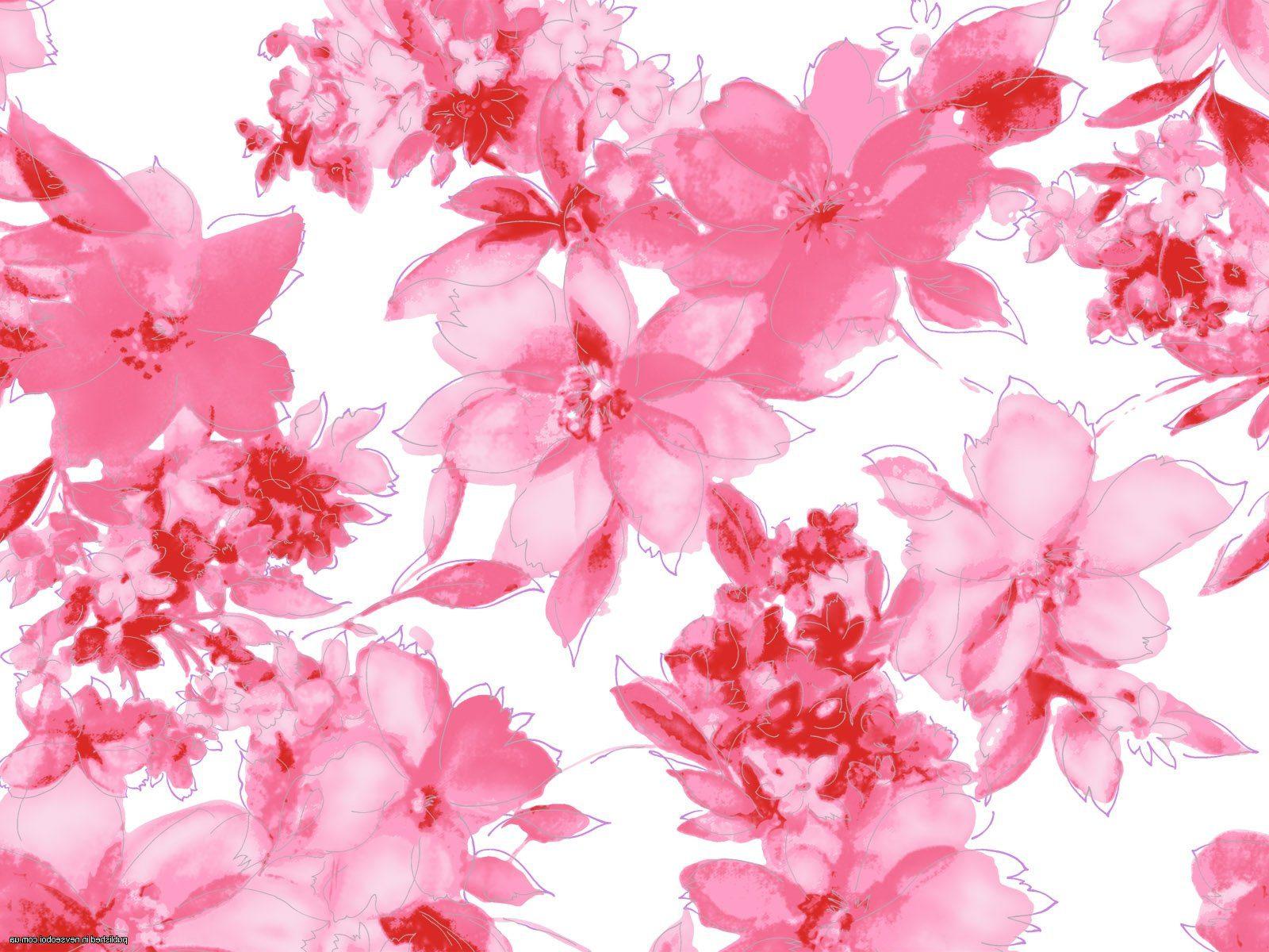 Самые красивые цветы в мире: Фото и описание