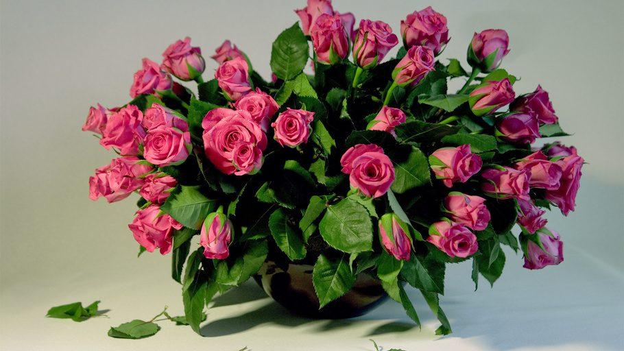 Белые розы букет картинки красивые