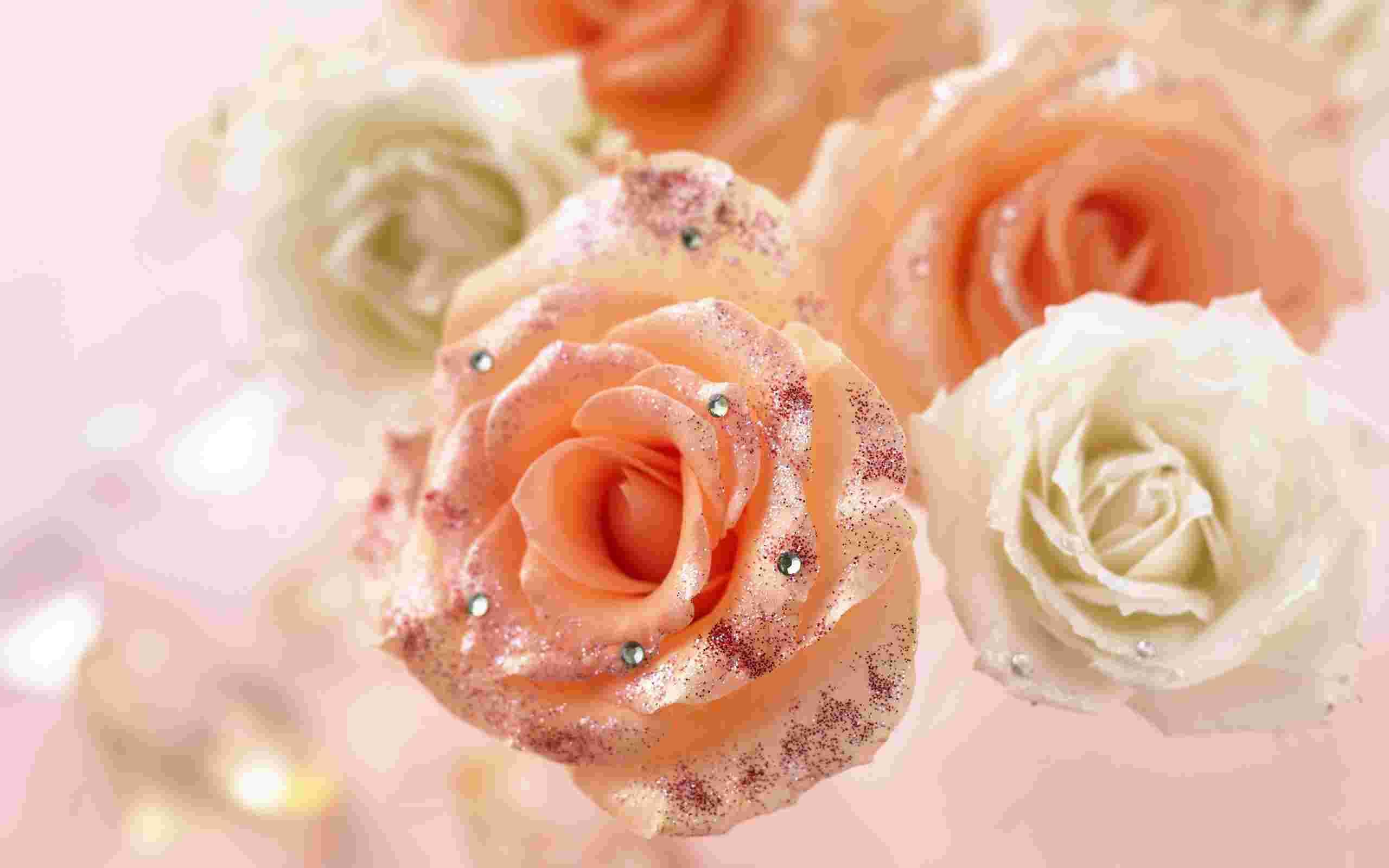 Красивые живые цветы скачать