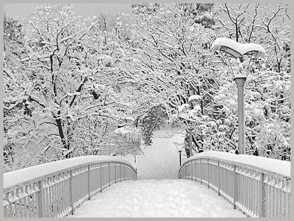 Скачать картинки с первым снегом бесплатно