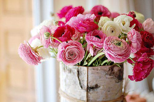 Букеты цветов на белом фоне