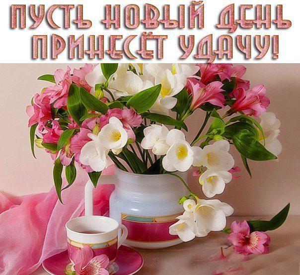 Картинки улыбнись красотка 7
