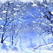 Красивые картинки на рабочий стол зима большие на весь экран бесплатно (36 фото)