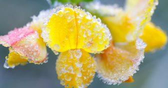 Красивые зимние картинки (35 фото)
