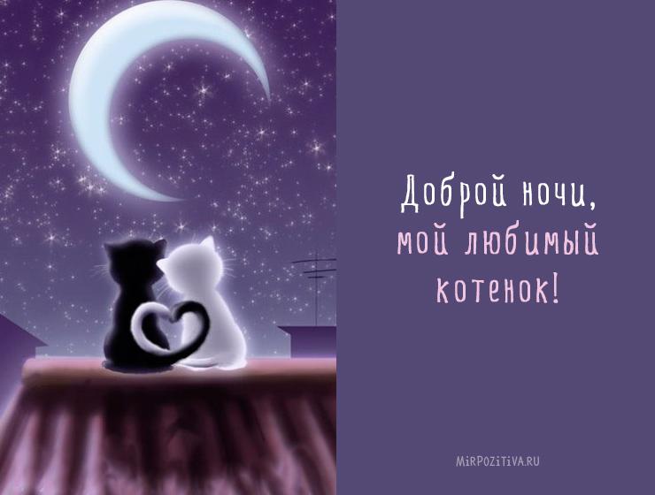 Спокойной ночи любимый картинки с надписями скачать бесплатно