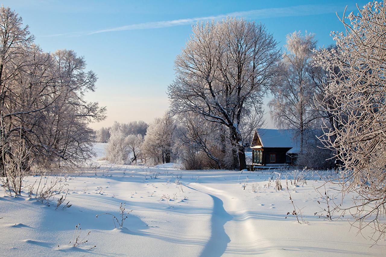 Зимние картинки самые красивые