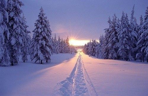 Beautiful Snowflake In The Sunlight: Картинки красивые фото зимы (35 фото) • Прикольные