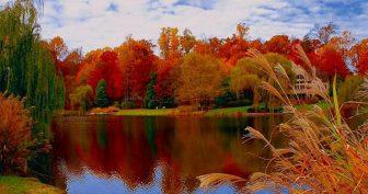 Картинки Красавица Осень (35 фото)