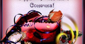 Картинки С Днем Рождения Сонечка (27 фото)