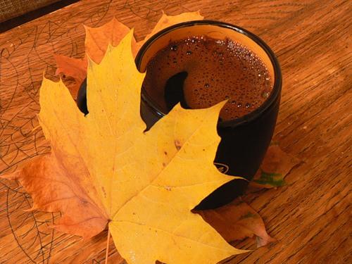 Фото книга и кофе