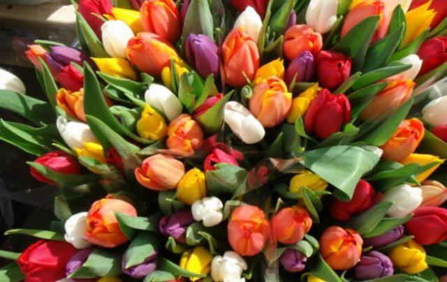 Цветы в коробке на белом фоне 37
