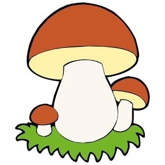 Тигр картинка для детей грибы