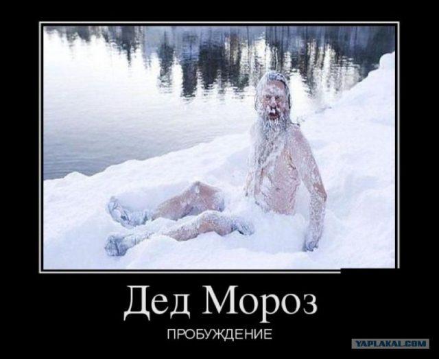 Конкурс смешных фотографий вконтакте
