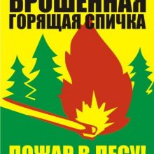 Картинки «Берегите лес от пожара!» (29 фото)