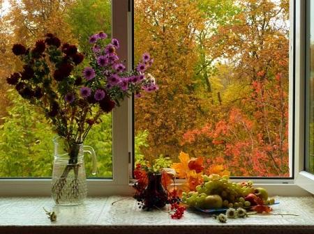 Картинки за окном осенний дождь