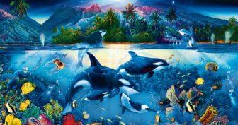 Картинки для детей морское дно (35 фото)