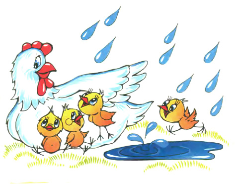 Картинки курица с цыплятами