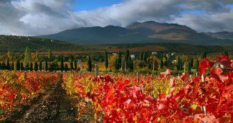 Картинки осень в Крыму (35 фото)