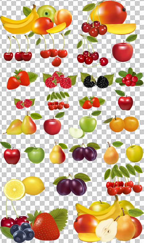 Картинки овощи для детей на белом фоне