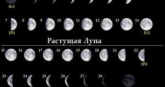 Картинки фазы луны (8 фото)