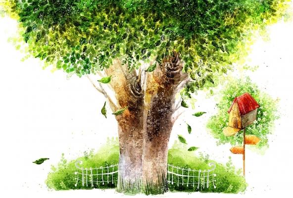Птицы картинки на дереве