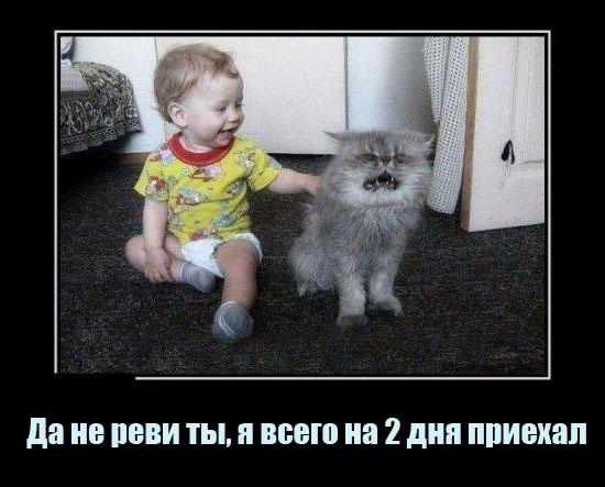 Смешные фото детей с надписями до слёз