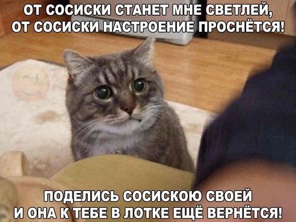Сериалы Российские  Страница 2  Скачать фильмы бесплатно