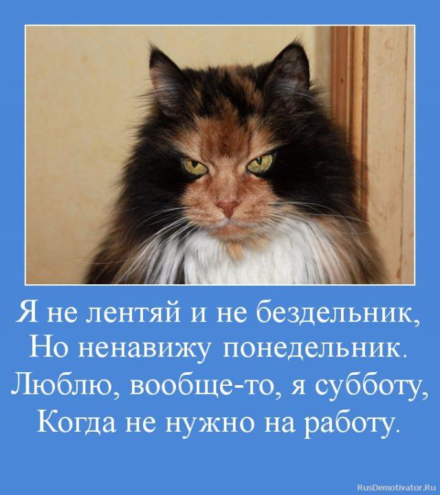 http://bipbap.ru/wp-content/uploads/2018/03/10022-1-640x721.jpg