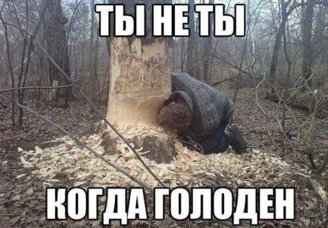 ВКонтакте моя страница вход на страницу