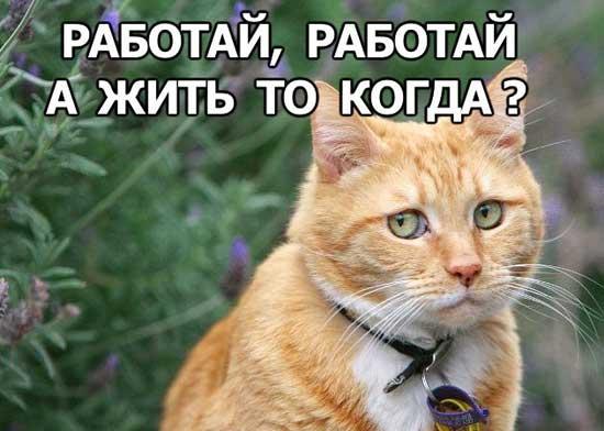 работа бухгалтера в аудиторских компаниях москвы