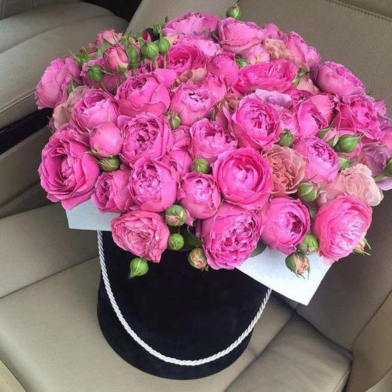 Розовые розы фото букеты красивые картинки