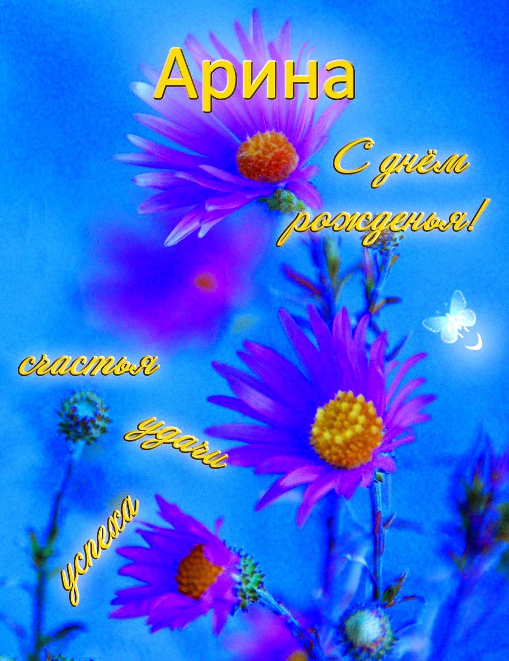 С Днем рождения Арина, Ариша 38