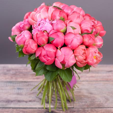 Красивые картинки розы нарисованные