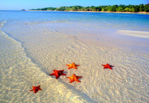 картинки океана красивые