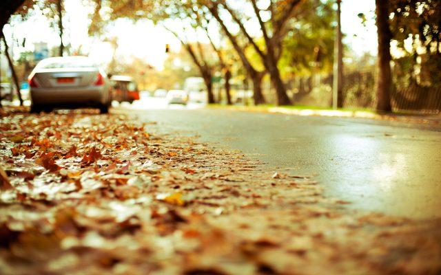Картинка золотая осень в парке лавочки осенние желтые листья