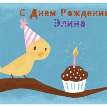 Смешные картинки поздравления С Днем Рождения Элина (22 фото)
