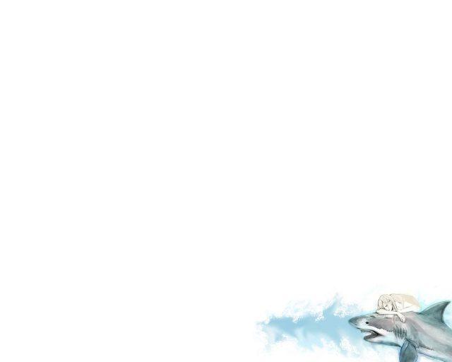 Картинка белый фон без ничего (5 фото)
