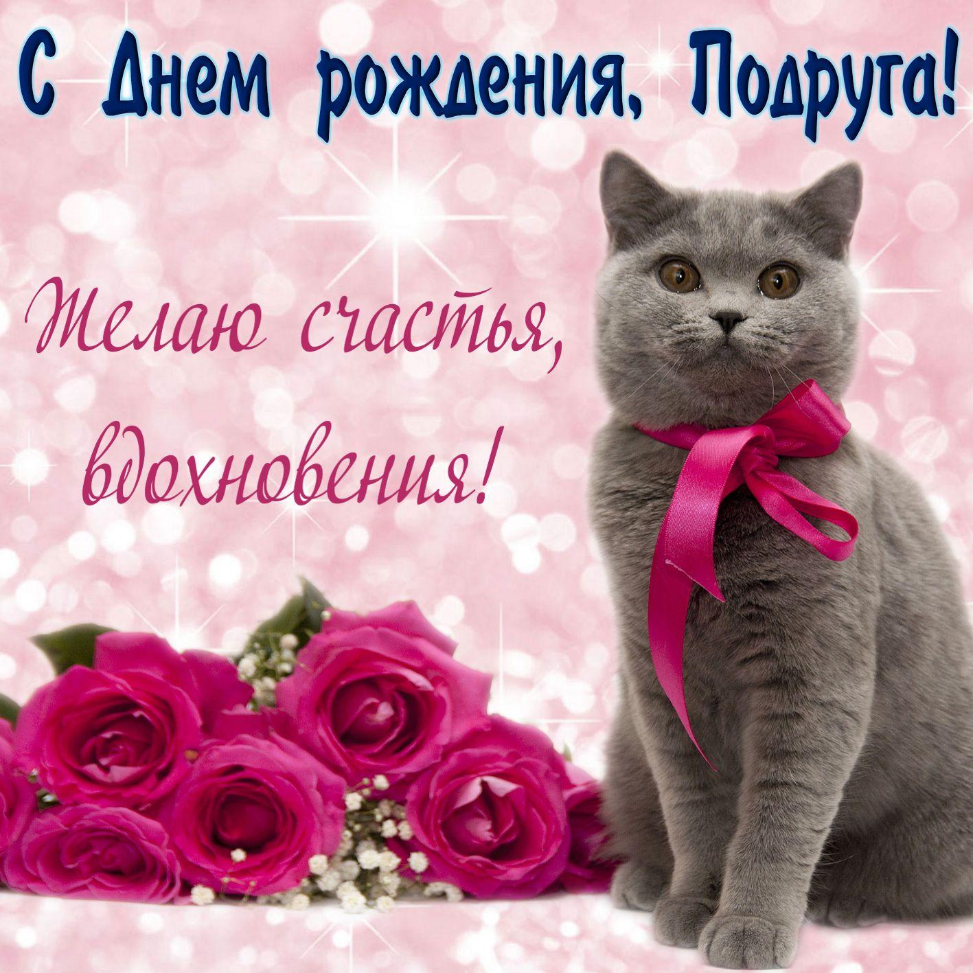 Принимай Подруга Поздравления